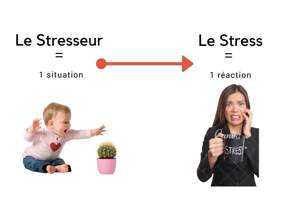 stresseur et stress